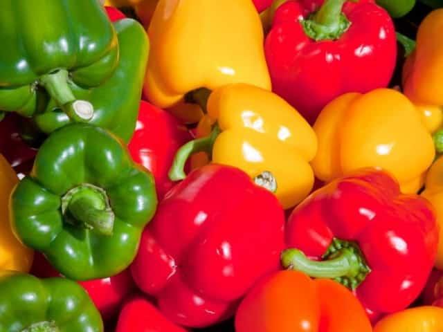 Bell-Peppers-640x480.jpg